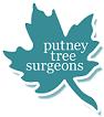 Tree surgeons Putney